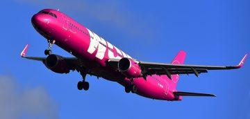 Wow air cancelled flight